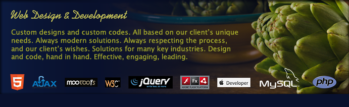 Austin Web Design Development Company